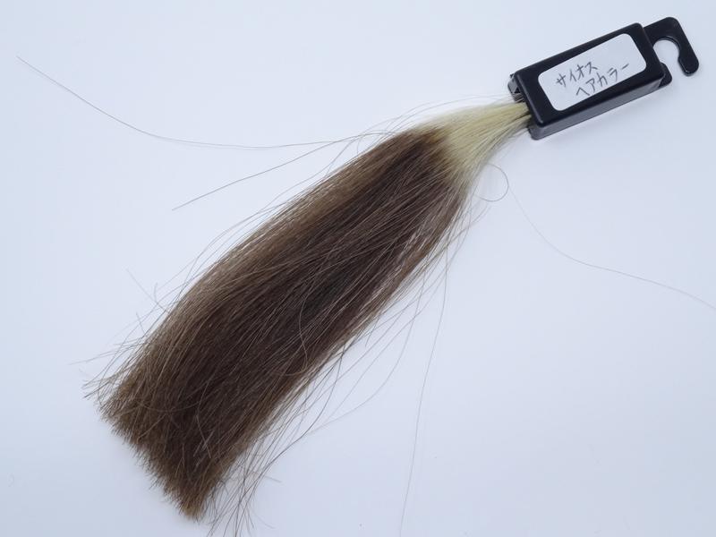 サイオス ヘアカラー 白髪100% 染め後