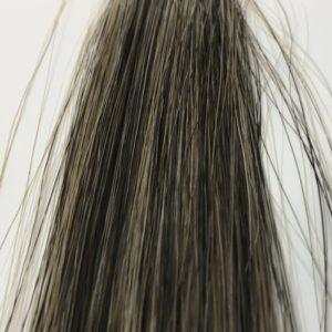 ボタニカラー 白髪50 染め一回目