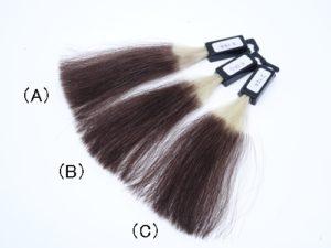【検証】シャンプーが違うとどのくらい白髪染めの色持ちが変わる?